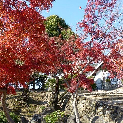Himeji - Japonia