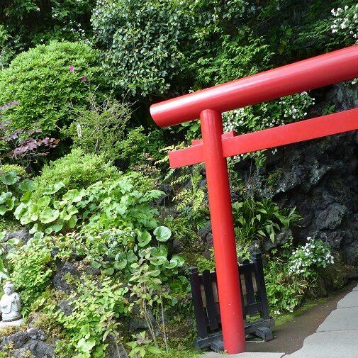 natura Japonii